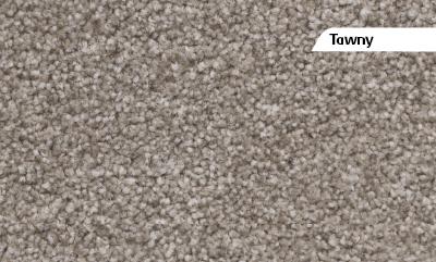 Lounge Bedroom Amp Hall Carpet Carpet Tiles Tauranga From